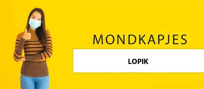 mondkapjes-kopen-lopik-3411