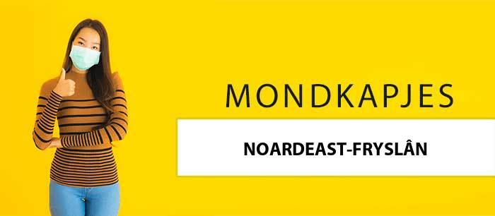 mondkapjes-kopen-noordoost-friesland-9101